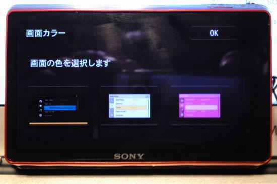 DSC_TX100V_038.jpg