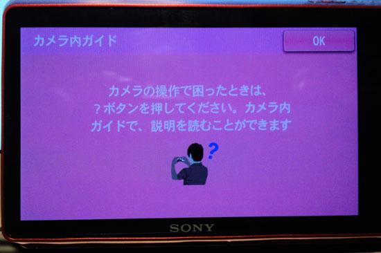 DSC_TX100V_040.jpg
