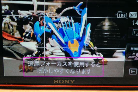 DSC_TX100V_047.jpg