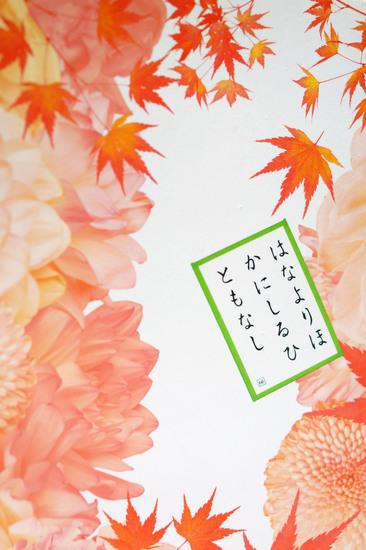 Chihayafuru_Shimo_no_ku_002.jpg